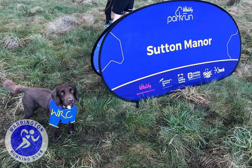PR_SuttonManor_Dog-2